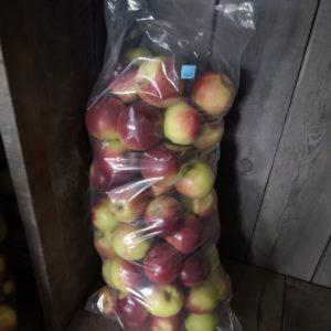 ~ 20 lbs Apples