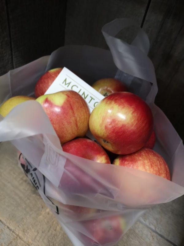 Apples, MacIntosh, 5 lbs