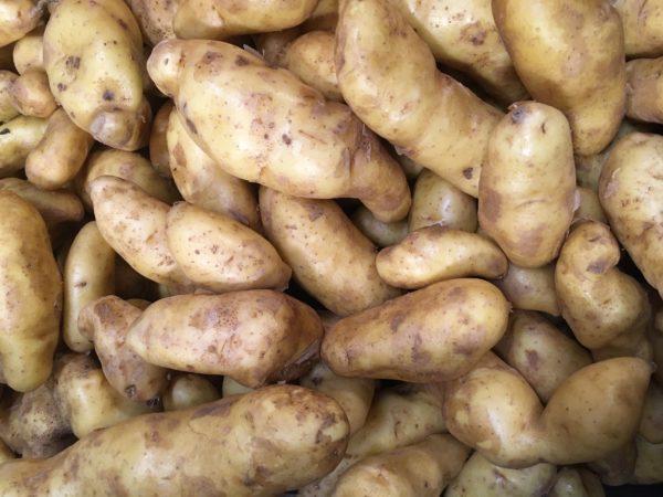 Potatoes, Yellow Fingerling 900g